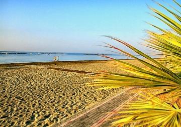 Παραλία Αφροδίτη